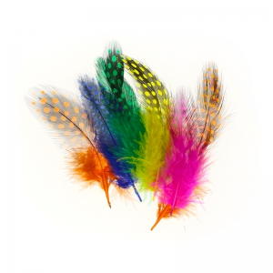 Set 30 Plumas Multicolor
